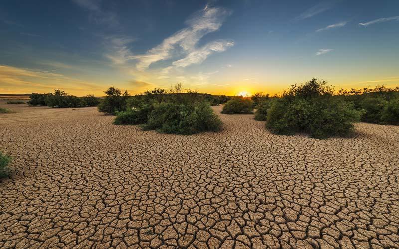 Delo blogpost - come combattere il caldo - terra arida